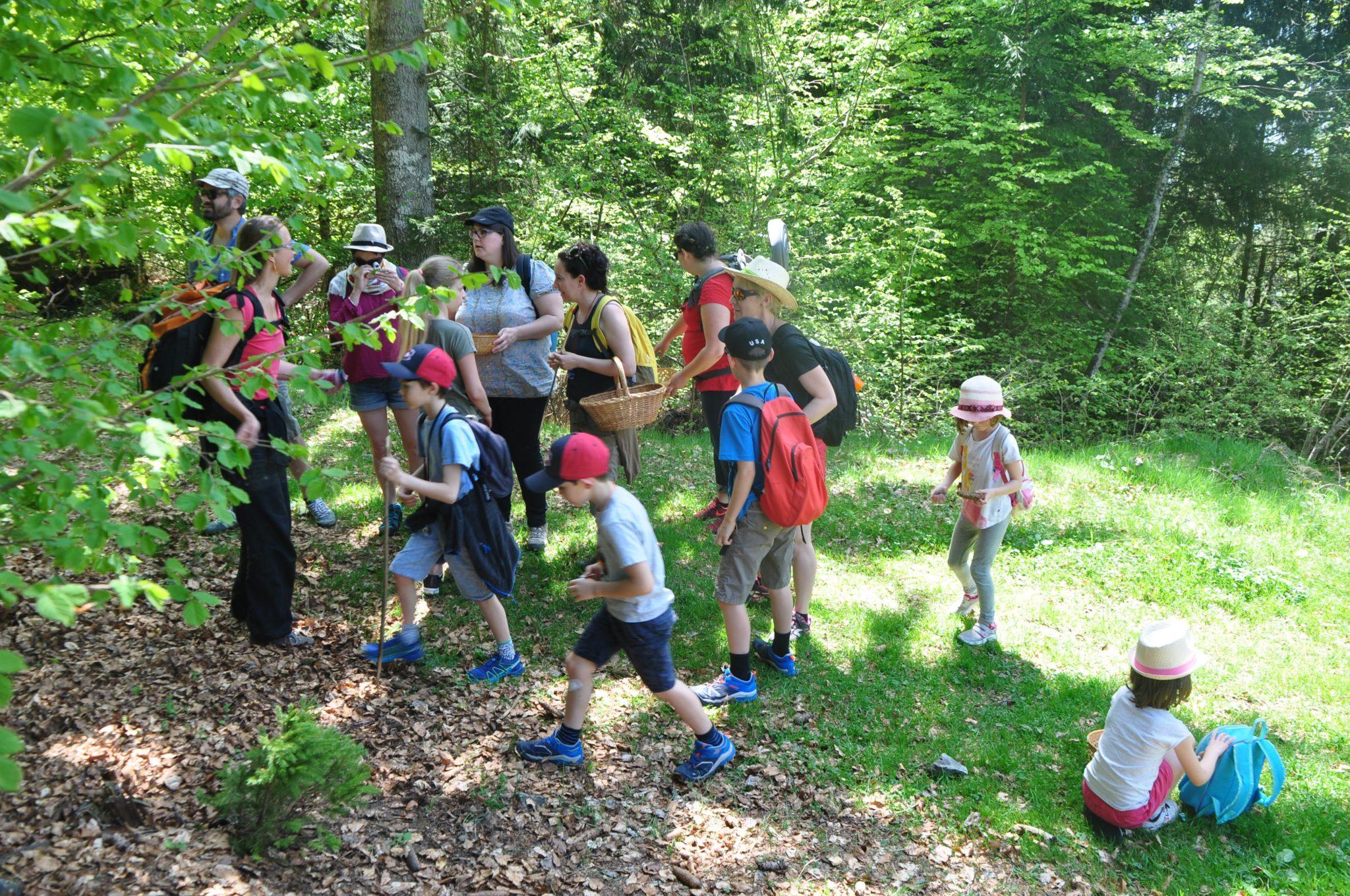DSC 0027 - Balades curieuses et ateliers dans la nature à Freydière les 6 et 7 octobre 2018