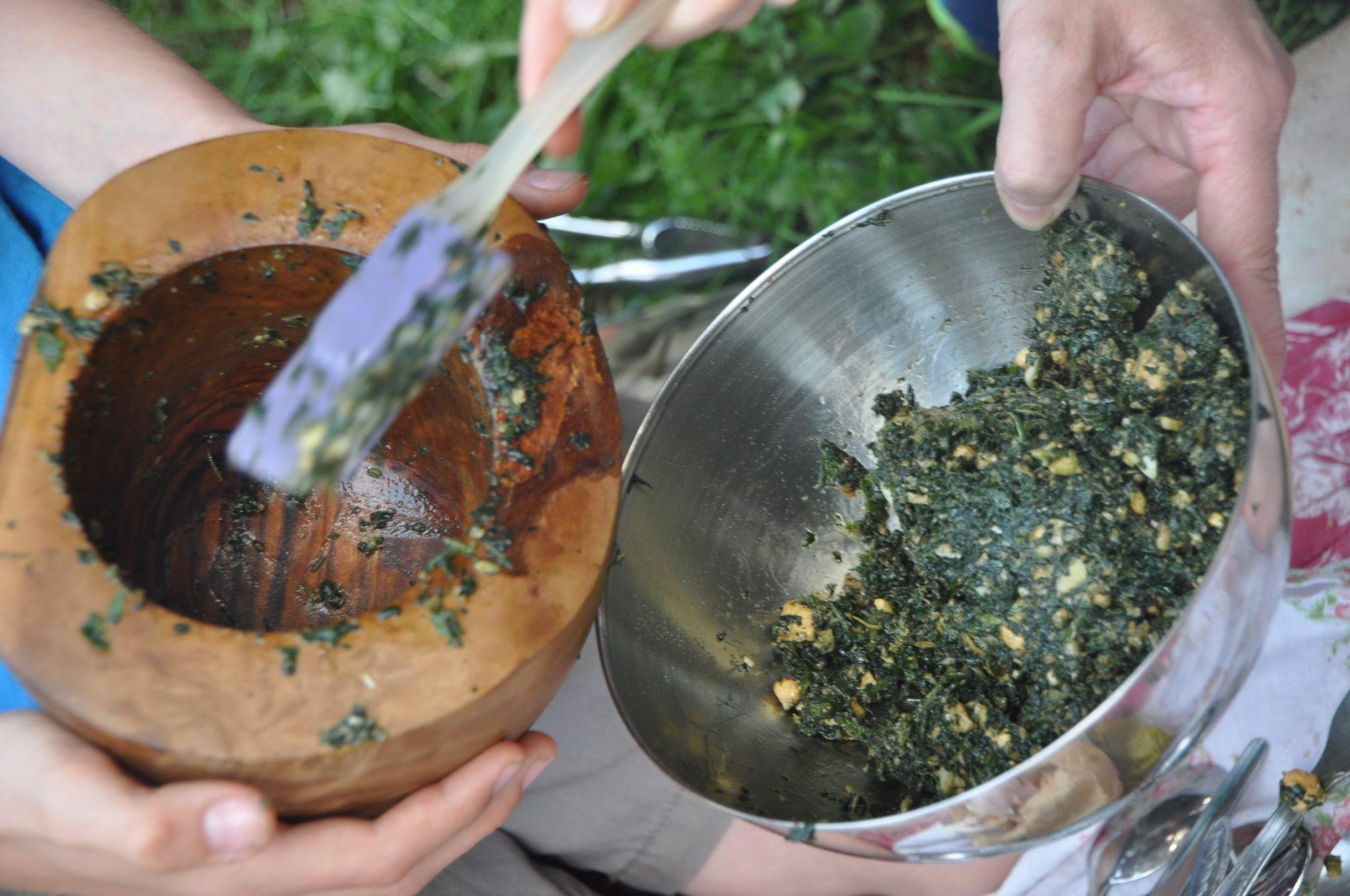 DSC 0079 - Balades curieuses et ateliers dans la nature à Freydière les 6 et 7 octobre 2018