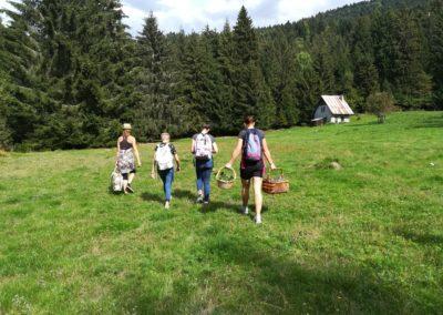 IMG 20180909 152940 400x284 - Balades curieuses et ateliers dans la nature