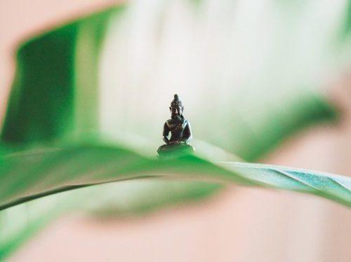 Institut Dharma programme enseignement bouddhiste mindfulness 710x375 e1587566055873 - Agenda